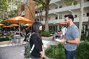 University of Miami School of Law | The Law School Admission