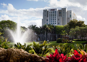A fountain, set in a grassy field surrounded by palm trees and other tropical plants, blasts water into the blue, cloudy sky. The gray FIU building stands tall behind a cluster of palm trees.